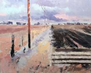 Fields 11